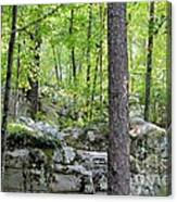 The Beauty Of Boulder Field Canvas Print