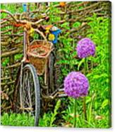 The Bike In The Garden Canvas Print