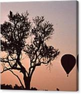 The Bird And The Balloon Canvas Print