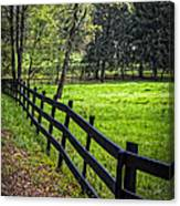 The Black Fence Canvas Print