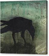 The Black Flag Of Himself Canvas Print