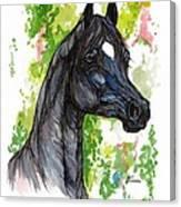 The Black Horse 1 Canvas Print