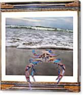 The Blue Crab Canvas Print
