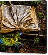 The Book Canvas Print