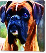 The Boxer - Painterly Canvas Print