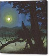The Broken Tree Canvas Print