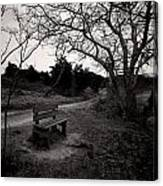 The Brooding Bench Canvas Print