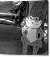 The Buggy Frog Canvas Print