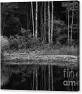 The Bush By The Lake Bw Canvas Print