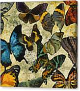 The Butterfly Collection #1 Canvas Print