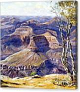 The Canyon Canvas Print