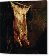 The Carcass Of An Ox, Late 1630s Canvas Print