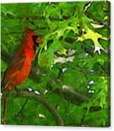 The Cardinal 2 Painterly Canvas Print