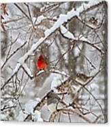 The Cardinal Rules Canvas Print