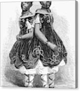 The Carolina Twins, 1866 Canvas Print