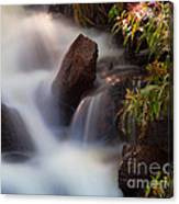 The Cascades Canvas Print
