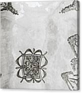 The Ceiling Design Canvas Print