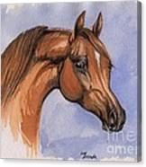 The Chestnut Arabian Horse 1 Canvas Print