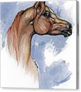 The Chestnut Arabian Horse 4 Canvas Print