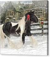 The Christmas Pony Canvas Print