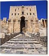 The Citadel In Aleppo Syria Canvas Print