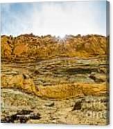 The Cliffs At Torrey Pines San Deigp Canvas Print