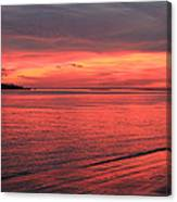 The Color Of Night Canvas Print