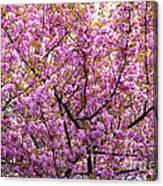 The Color Purple 2 Canvas Print