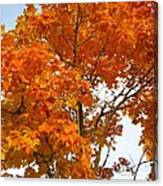 The Colors Brought To Autumn Canvas Print