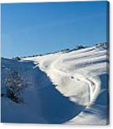 The Colors Of Snow Canvas Print