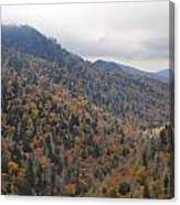 The Colors Of The Smokies Canvas Print