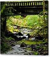 The Coming Of Autumn - Barnes Creek - Lake Crescent - Washington Canvas Print