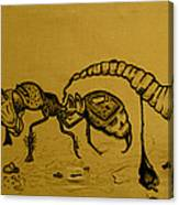 The Conception Of Picasso And Dali Canvas Print