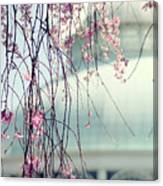 The Conservatory 2 Canvas Print