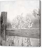 The Country Fence In Black And White Canvas Print