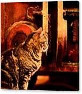 The Crane Yard Cat Canvas Print