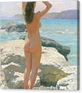 The Crimea. The Lisya Bay 2012 Canvas Print
