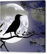 The Crow And Moon Canvas Print
