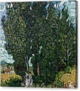 The Cypresses Canvas Print