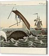 The Dangers Of Whale Fishing Canvas Print