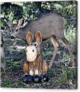 The Deer And The Donkey Canvas Print