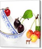 The Deers Among Cherries And Blue-and-white China Miniature Art Canvas Print