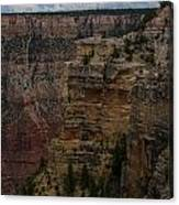 The Depths Of The Canyons Canvas Print