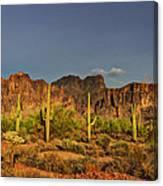 The Desert Aglow Canvas Print