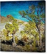 The Desert Canvas Print