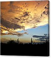The Desert Sky  Canvas Print