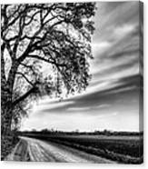 The Dirt Road In Black And White Canvas Print