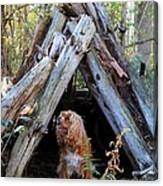 The Dog In The Teepee Canvas Print
