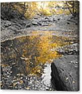 The Dry Creek Bed Canvas Print