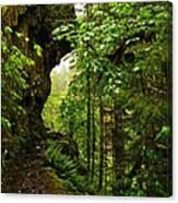 The Eagle Creek Trail Canvas Print